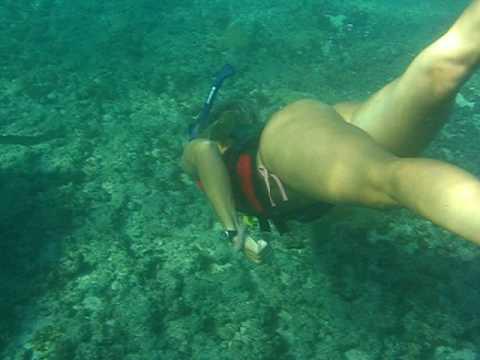 Mergulho com tartaruga em Noronha