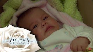 El robo de Luisita | Una moneda de amor | La Rosa de Guadalupe