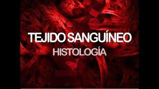 Tejido Sanguíneo | Histología