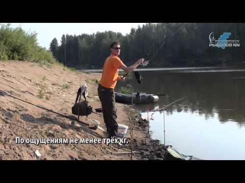 рыбалка ловля на ветлуге
