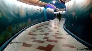 এক নজরে বাংলাদেশের সবচেয়ে বড় আন্ডার গুহা | Subway, Underpass | Bangladesh Big Underpass