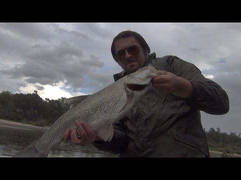река шайтан рыбалка
