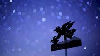 Star Time Lapse  - Japanese N.Alps -