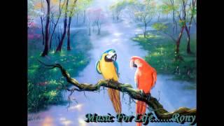 Khachar Vitor~~(Hindi Version) Lalon Song