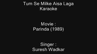 Tum Se Milke Aisa Laga - Karaoke - Parinda (1989) - Suresh Wadka