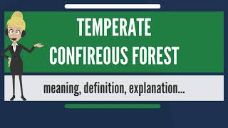 What is TEMPERATE CONFIREOUS FOREST? What does TEMPERATE CONFIREOUS FOREST mean?