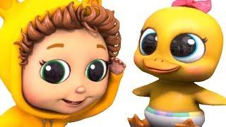 5 Little Ducks |  Educational | Nursery Rhymes |  Counting | Songs for Kids