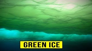 5 Strangest Things Found in Antarctica!