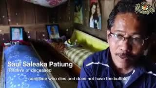Toraja punya cerita