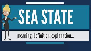 What is SEA STATE? What does SEA STATE mean? SEA STATE meaning, definition & explanation