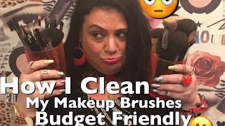 ❤️How I Clean My Makeup Brushes❤️Budget Friendly❤️Rosa