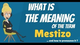 What does MESTIZO mean? MESTIZO meaning - MESTIZO definition - How to pronounce MESTIZO