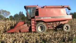 CaseIH 1620 harvest 2012