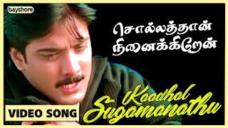 Kadhal Sugamanathu - Sollathaan Innaikkiren Video Song | Tarun | Sneha | Sivaji