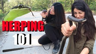 HOW TO FIND SNAKES - HERPING FOR BEGINNERS