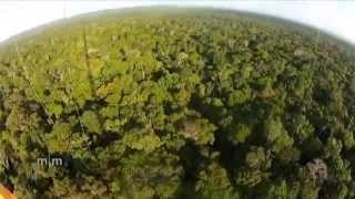 Atto-Turm im Amazonas-Gebiet: Klimaprojekt der Zukunft