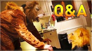 Q&A | OUR MOVIE!!!