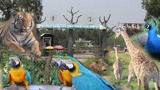 Safari Park Gazipur - Bangabandhu Sheikh Mujib Safari Park, Gazipur in Bangladesh