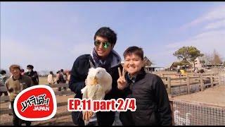 MAJIDE JAPAN : EP11 - 2/4 | CHIBA ที่เที่ยว MOTHER FARM