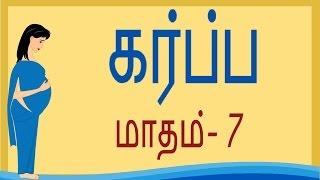 Pregnancy | Tamil  | Month 7 | கர்ப்பம் மாதம் 7 |  Week 25 to Week 28
