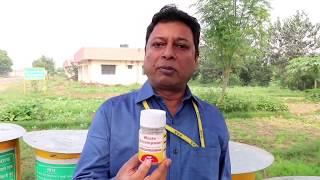 सभी बीमारियों का नियंत्रण 20 रुपयेcrop diseases control in Rs.20 with waste decomposer