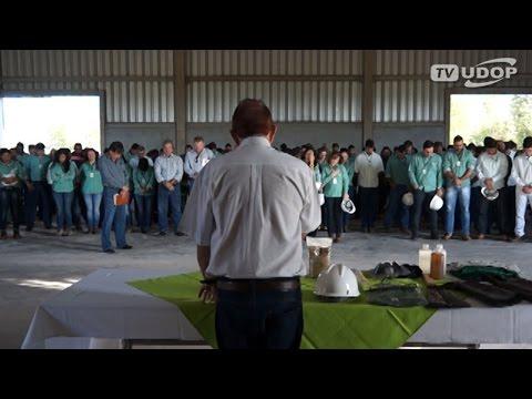 Usina Da Mata pretende moer mais de 3 mi t de cana na safra 2015 16