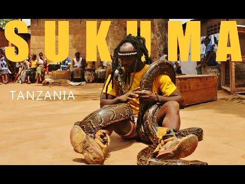 Xxx Mp4 Sukuma African Dance Tanzania Pythons 3gp Sex