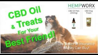 CBD Oil for Pets ~ 717-333-3999