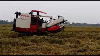 Yanmar harvester in ap