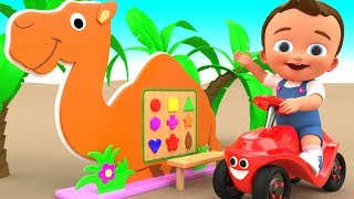 Learn Colors And Shapes With Crazy Boy Wooden Camel Educational Toys | Educational Videos For Kids