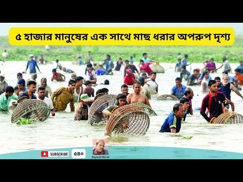 Xxx Mp4 নরসিংদীর মরা পাগলা নদীতে ৫ হাজার মানুষের এক সাথে মাছ ধরার ভিডিও Fishing Video In The Dead River 3gp Sex