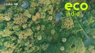 Eco India: In a rapidly urbanising Mumbai, can its green lung, Aarey be saved?
