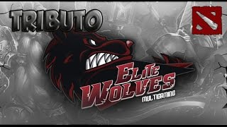 Tributo a ELITE WOLVES | Dota 2