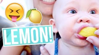 BABY'S FIRST LEMON!