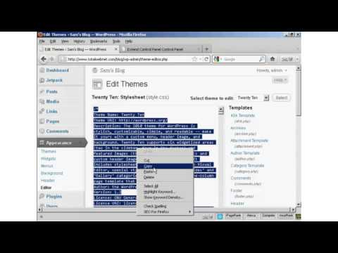 How To Edit WordPress Theme CSS Styles