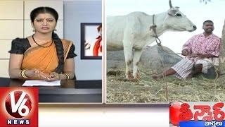 Bithiri Sathi On Superstitions | Funny Conversation With Savithri | Teenmaar News | V6 News