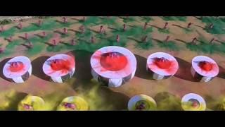 Hum Unse Mohabbat - Blu Ray HD