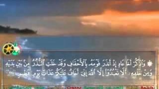 سورة الأحقاف بصوت الشيخ ماهر المعيقلي