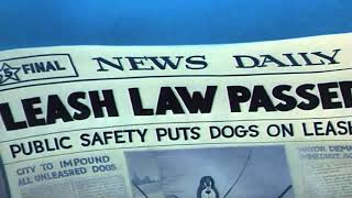 Tom and Jerry |Leash law passed| spike di rantai |funny part|
