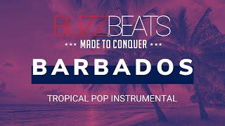 🐝 Clean Bandit x Sean Paul Tropical Pop Type Beat Instrumental - Barbados (Prod. BuzzBeats)