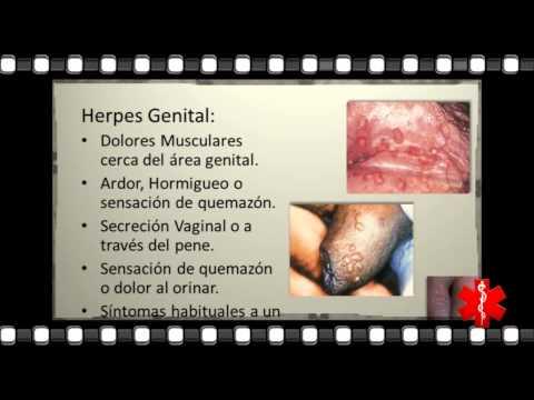 Curar Herpes Todo sobre Herpes Que es Como se Contagia Fotos o Imagenes Cura o Tratamientos
