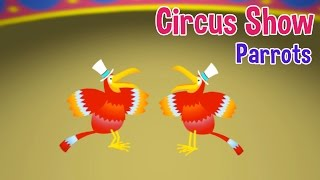 Circus Show For Kids - Parrots - Nursery Rhymes & Kids Songs by Oxbridge Baby