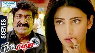 Shruti Haasan Trolls Raghu Babu | Race Gurram Telugu Movie Scenes | Allu Arjun | Surender Reddy