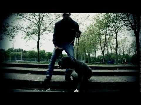 Xxx Mp4 DMJ Feat Jigga Black Teufelskreis Offiziell Musikvideo 2012 3gp Sex