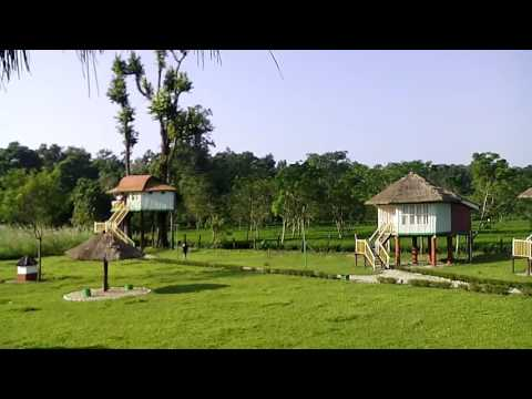 Dhupjhora Elephant Camp, Dhupjhora, Jalpaiguri, West Bengal, India