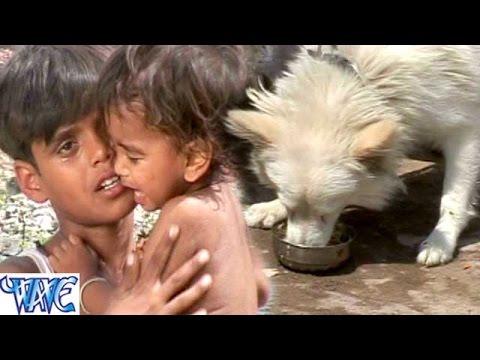 दूध रोटी कुकुरा खाता बबुआ छटपटाता - Sugi - Master Sami - Bhojpuri Sad Songs 2015 new