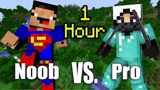 ONE HOUR Of NOOB Vs. Pro - Minecraft