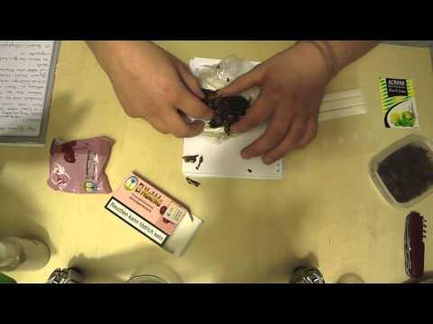 Xxx Mp4 Deutschen Tabak Anfeuchten 3gp Sex