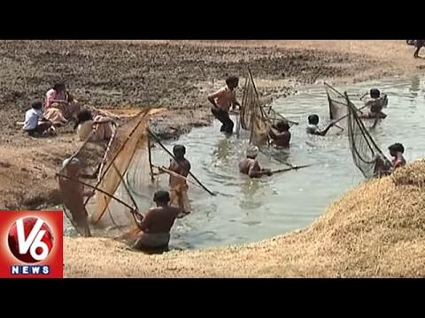 Telangana Govt Decided To Set Up Fisheries College at LMD Colony In Karimnagar | V6 News
