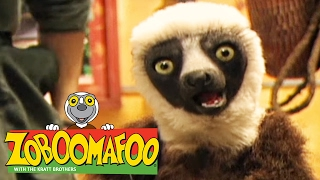 🐒 Zoboomafoo 🐒 132 | Spots and Stripes - Full Episode | Kids TV Shows